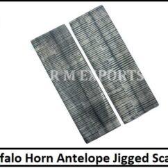 Buffalo Horn Antelope Scales