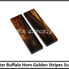 Water Buffalo Horn Golden Stripes Scales.jpg