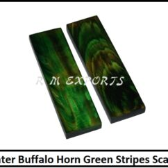 Water-Buffalo-Horn-Green-Stripes-Scales.jpg