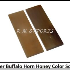 Water Buffalo Horn Honey Color Scales.jpg