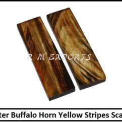 Water Buffalo Horn Yellow Stripes Scales.jpg