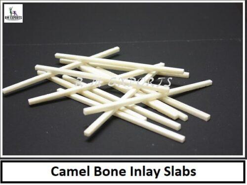 Camel Bone Slabs