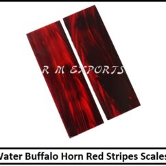 Water Buffalo Horn Red Stripes Scales.jpg