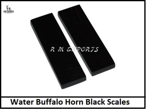Water Buffalo Horn Black Scales.jpg