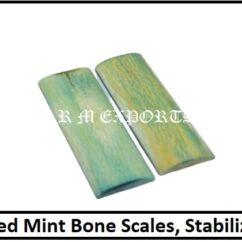 Mint Bone Knife Scale
