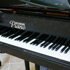 Piano & Harpsichord Keys